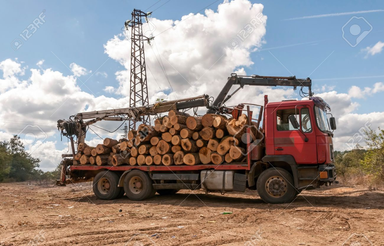 Инструкция за безопасна работа при товарене и транспортиране на дървен материал