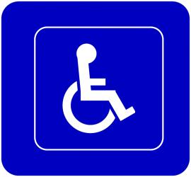 Правилник за прилагане на Закона за хората с увреждания