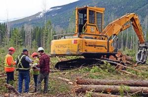 Длъжностна характеристика на длъжността Товарач, трупи и друг дървен материал